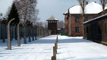 Auschwitz-Birkenau State Museum, Oświęcim